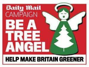 Daily Mail Tree Angel logo