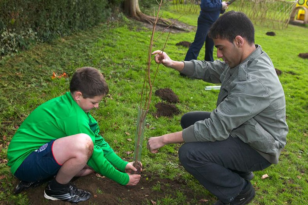 a student plants a tree while a teacher holds it steady